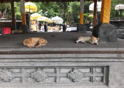 Tempel Pura Melanting