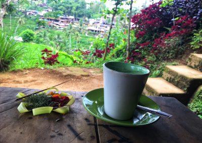 Kopi Luwak Kaffee in den Reisterrassen