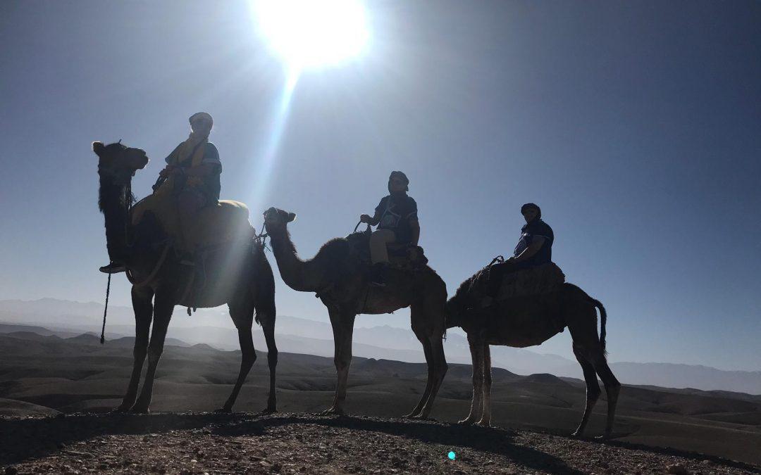 Marrakech – das Tor zum Orient